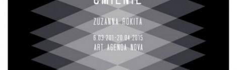 Wystawa Zuzanny Rokity w Galerii Art Agenda Nova