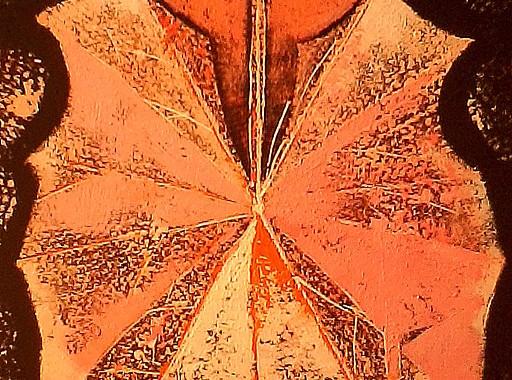 Ryszard Rabsztyn - Symetria w przyrodzie